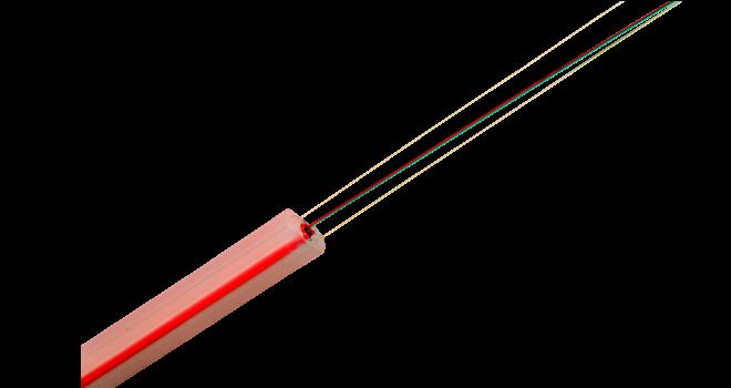 DiTeSt-SMARTProfile-660x350