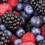 Balanzas Analíticas para medición de humedad en alimentos