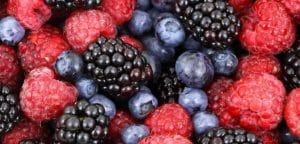 berries-730x350-1-300x144