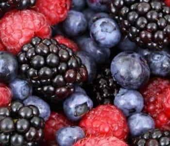 berries-730x350-1-350x300
